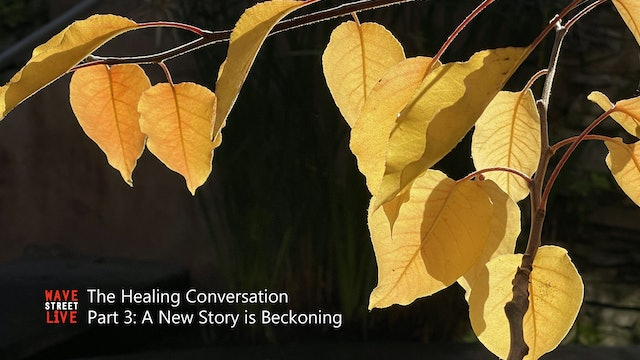 The Healing Conversation Ep. 3: A New Story is Beckoning