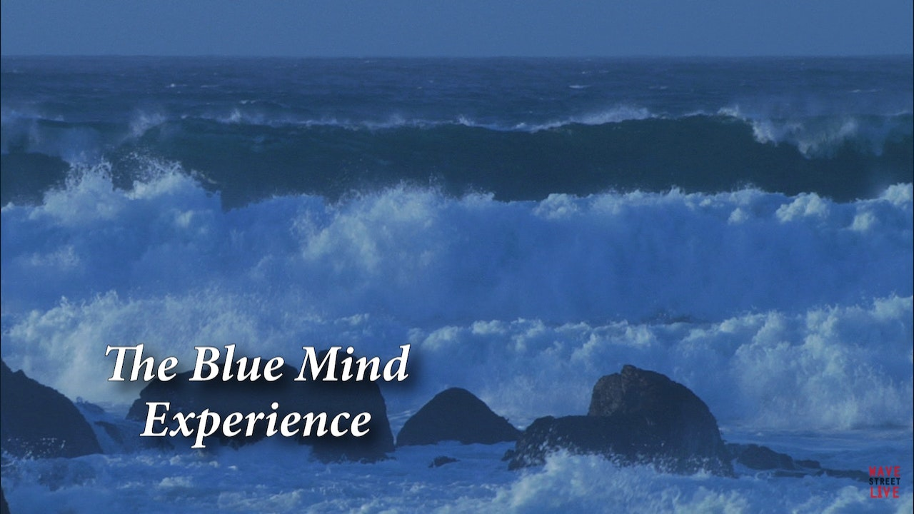 The Blue Mind Experience