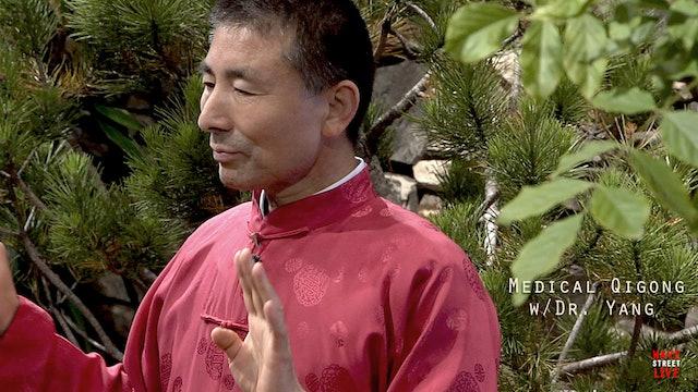 Medical Qigong w/ Dr. Philip Yang - Lesson 3 pt. 2