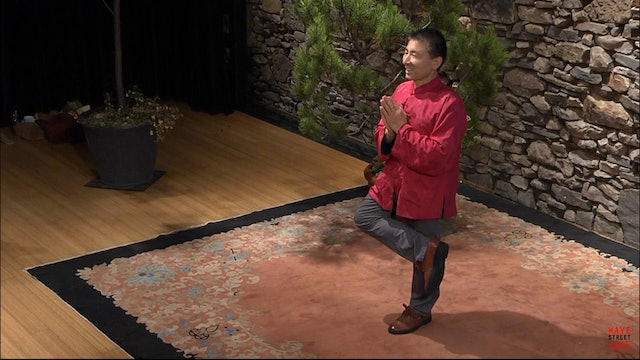 Medical Qigong w/ Dr. Philip Yang - Lesson 3 pt. 2