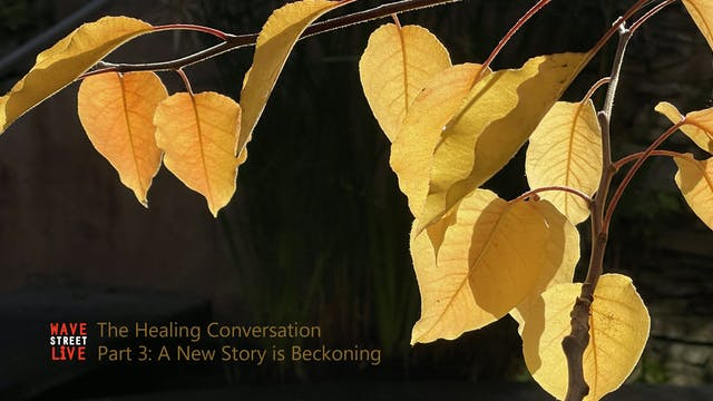 The Healing Conversation Ep. 3: A New...