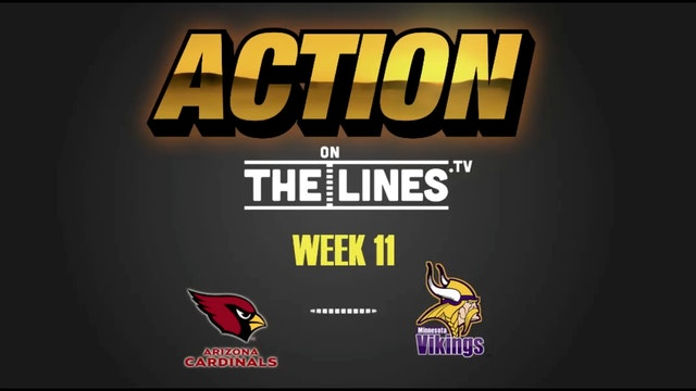 NFL- ARI vs MIN- Nov 20