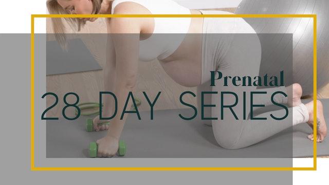 Prenatal 28-Day Series