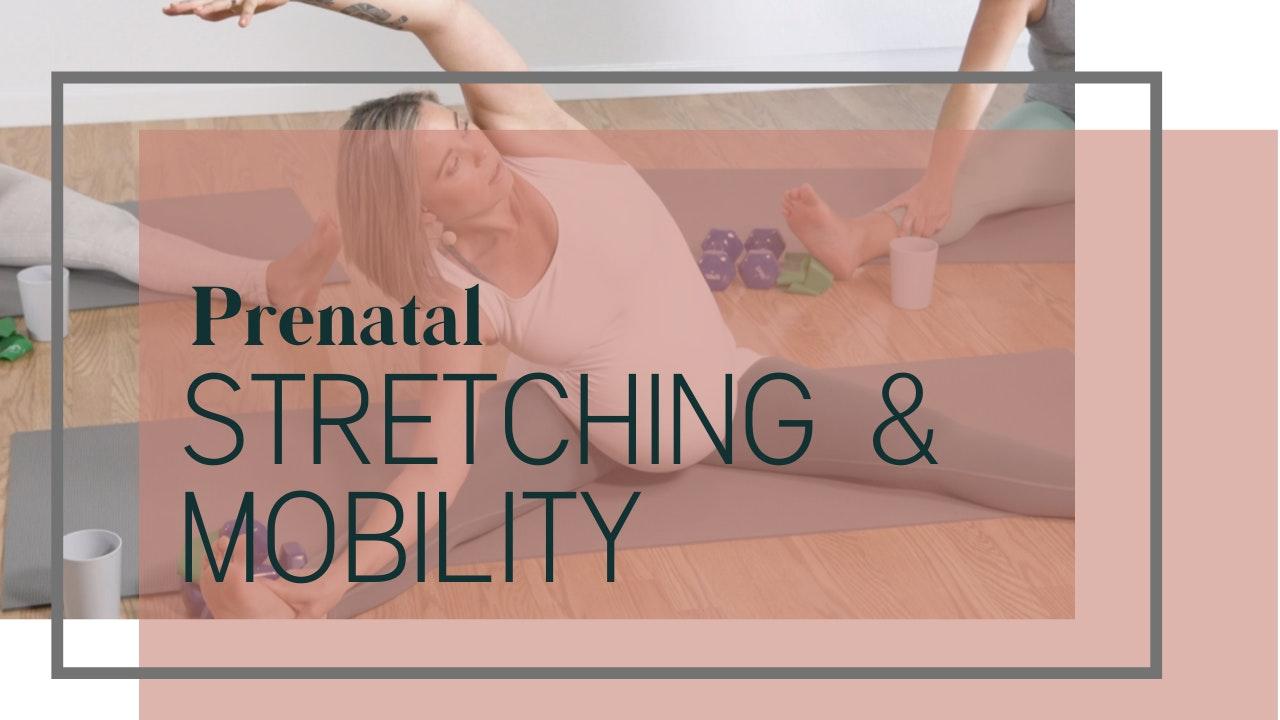 Prenatal Stretching & Mobility