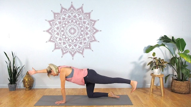 Prenatal Core Circuit for Stability (Intermediate)
