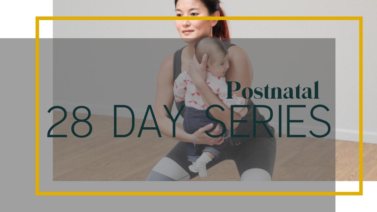 Postnatal 28-Day Series