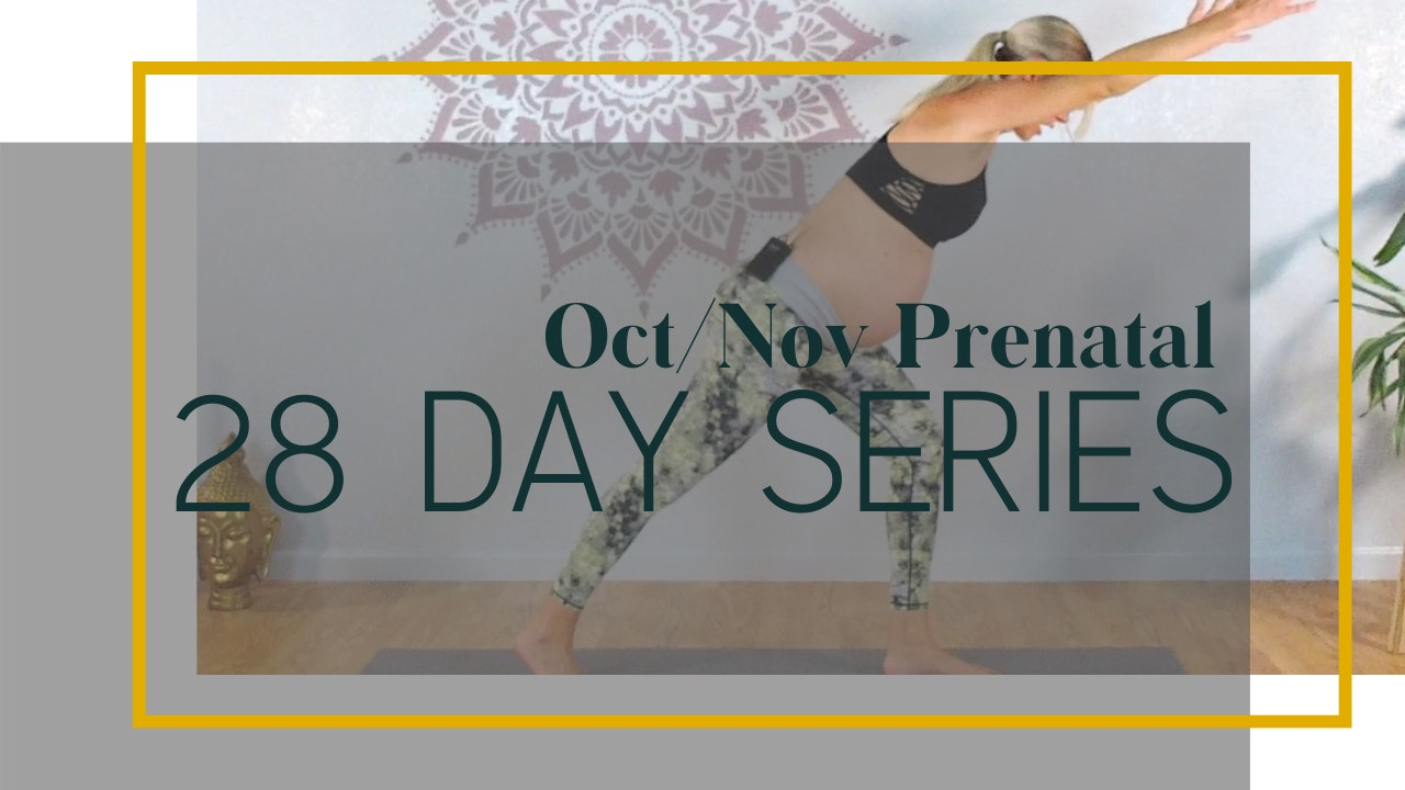 Oct/Nov 28 Day Prenatal Series