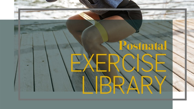 Postnatal Exercise Library