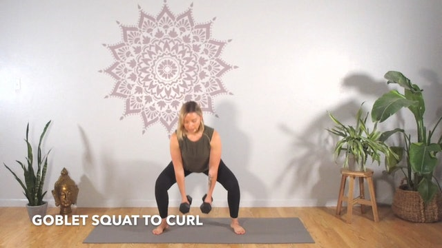 Circuit 1 // Exercise 1 ~ Goblet to Curl