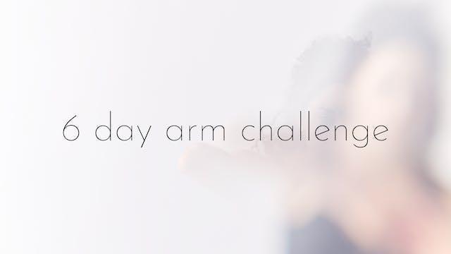 6 day arm challenge