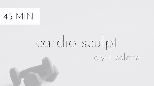 cardio sculpt #2 | aly and colette