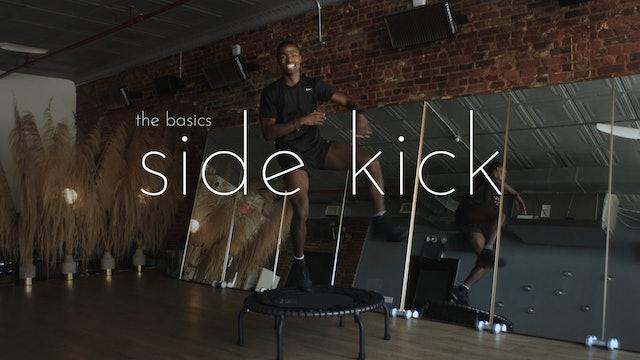 the basics - side kick