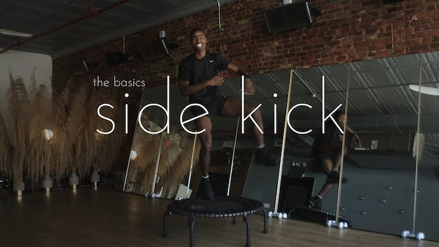 the basics - side kick