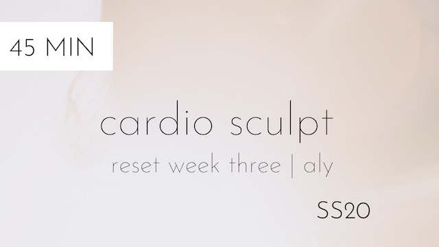 ss20 reset week three | cardio sculpt #5 with aly
