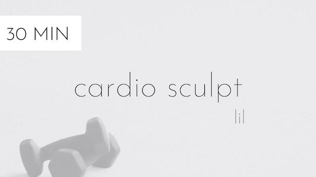 cardio sculpt #19   lil