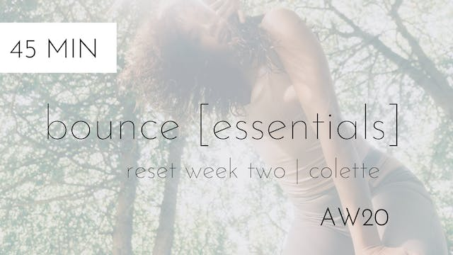 aw20 reset week two | bounce [essentials] #2 | colette