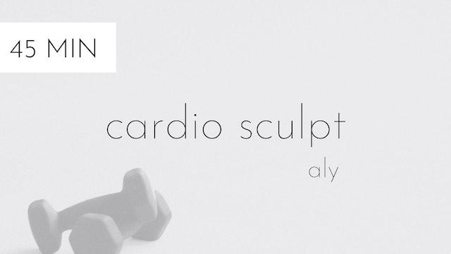 cardio sculpt #13 | aly