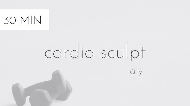 cardio sculpt #6 | aly