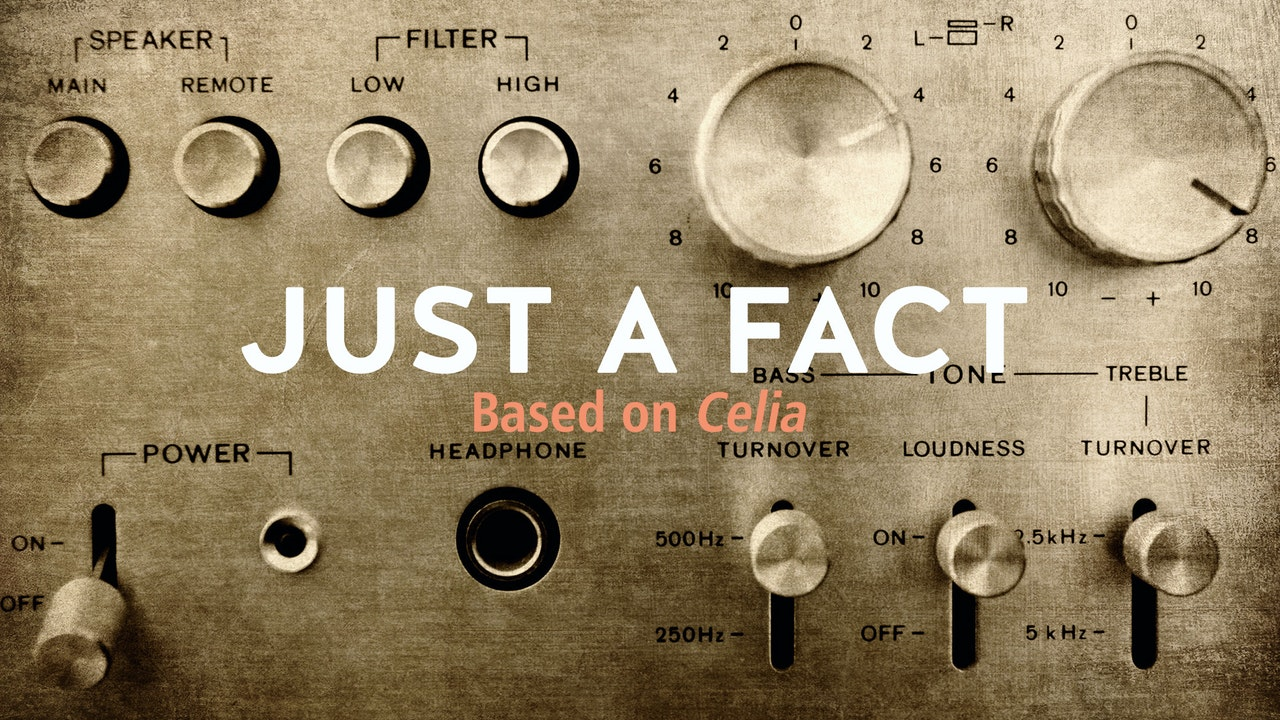 JUST A FACT (based on CELIA)