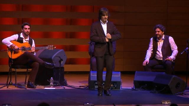 Flamenco Legends by Javier Limón - The Paco de Lucía Project