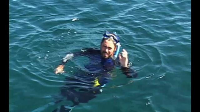 LATV S3:36 Avalon, Catalina Island