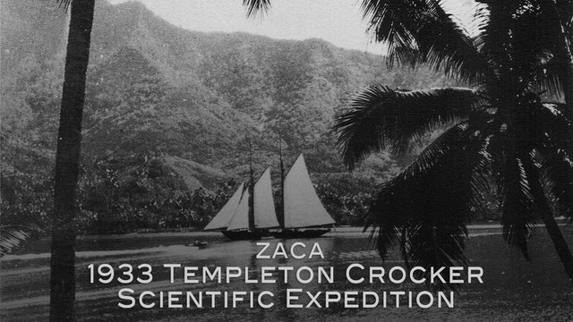 Zaca: 1933 Templeton Crocker Scientific Expedition