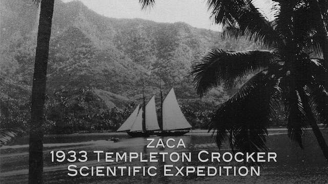 Zaca: 1933 Templeton Crocker Scientif...