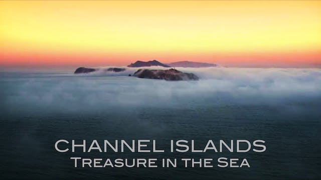 Channel Islands National Park: Treasu...