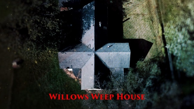 Human Bone of Child Found under the Willows Weep House