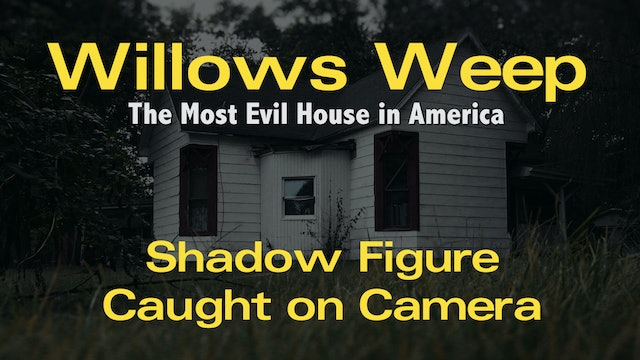 Willows Weep Shadow Figure - Entire 8-Minute Raw Footage
