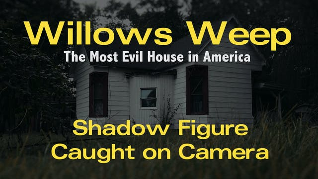 Willows Weep Shadow Figure - Entire 8...