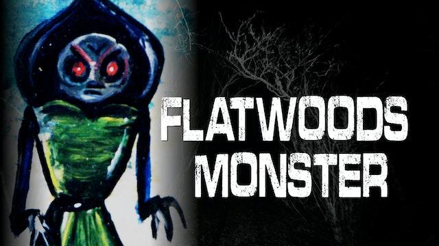 Flatwoods Monster - West Virginia UFO - 1952