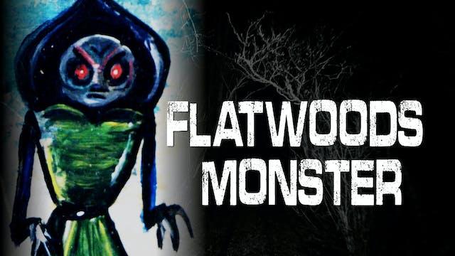 Flatwoods Monster - West Virginia UFO...