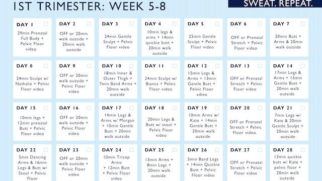 CALENDAR WEEK 5-8