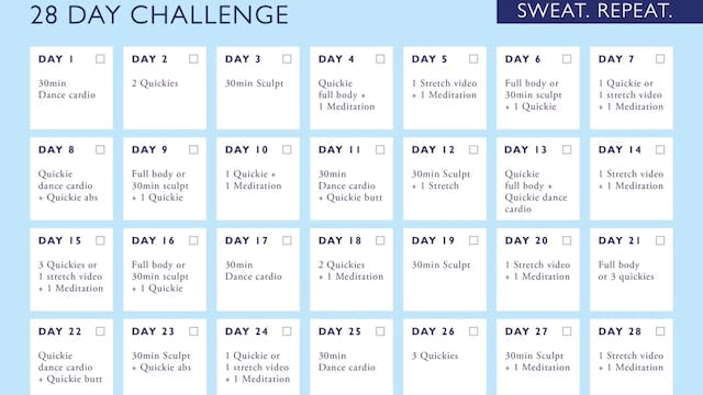 28 DAY STAY AT HOME CHALLENGE