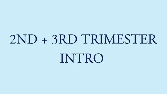 2ND TRIMESTER INTRO