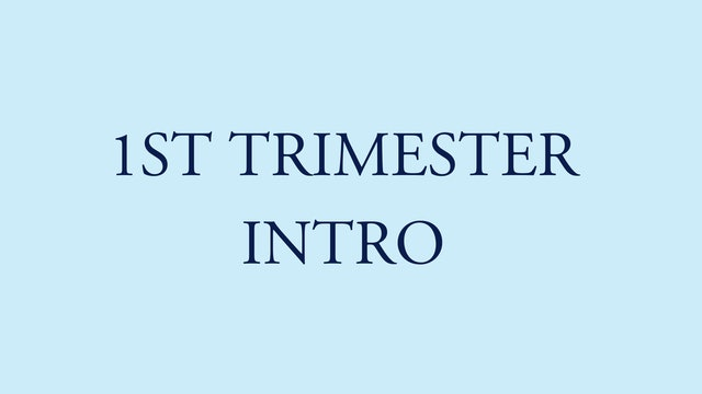 1st trimester intro