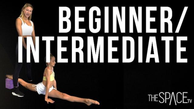 Beginner/Intermediate