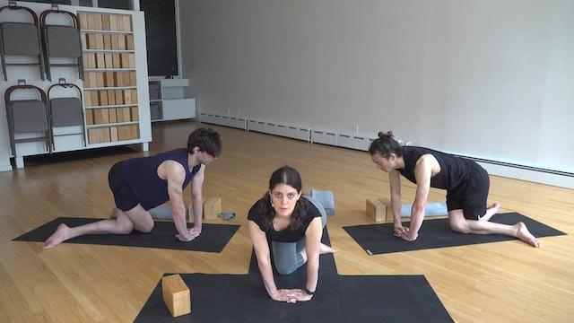 Katonah Yoga with Mary Dana 05.19.20