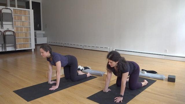 Katonah Yoga with Mary Dana 01.22.21
