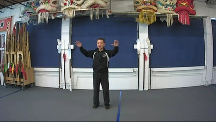 The Tai Chi Paradigm Video