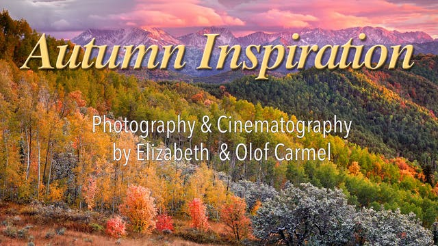 Autumn Inspiration in HD 1080p