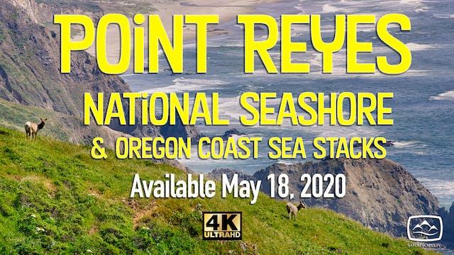 Point Reyes & Oregon Coast