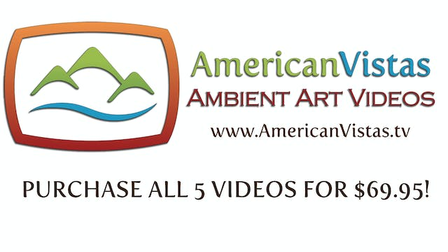 LIMITED TIME SPECIAL! PURCHASE ALL 5 VIDEOS FOR $69.95!