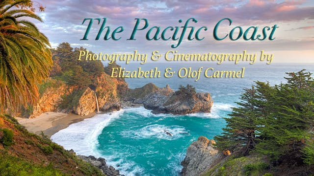 Experience The Pacific Coast