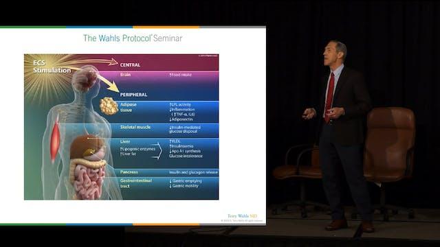 CBD To Modulate Autoimmune Disease and Symptoms