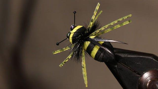 Jesse Riding: Rainy's Bumble Bee