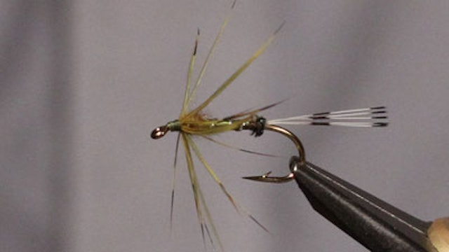 Jerry Criss: Classic Irish Mayfly