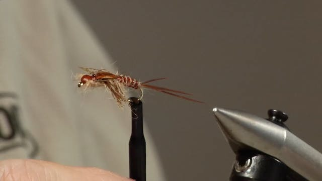 Bob Jacklin Yellowstone Patterns: March Brown Nymph
