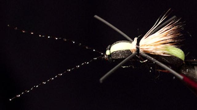Dave McKee: Long Horned Beetle